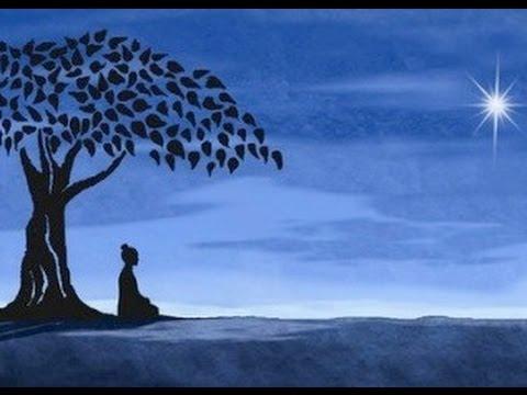 Vipassana blog
